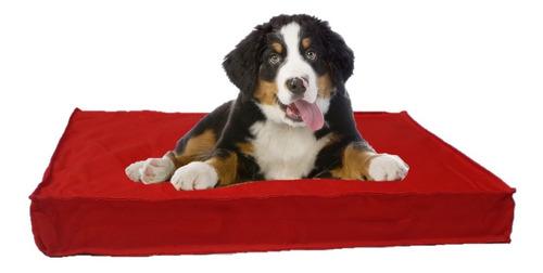 Imagen 1 de 3 de Funda Lisa Antidesgarro 90x60 Perros Mascotas Sin Relleno