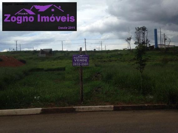 Terreno Para Venda Em Guarulhos, Vila Carmela - 1041