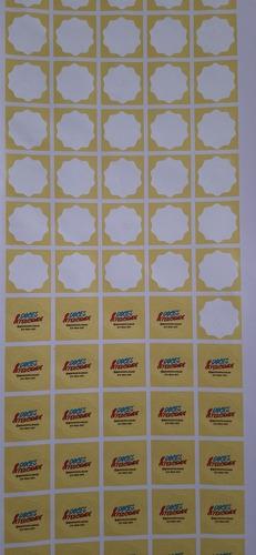 Imagem 1 de 2 de 500 Etiquetas Vinil 4x4cm Corte Especial