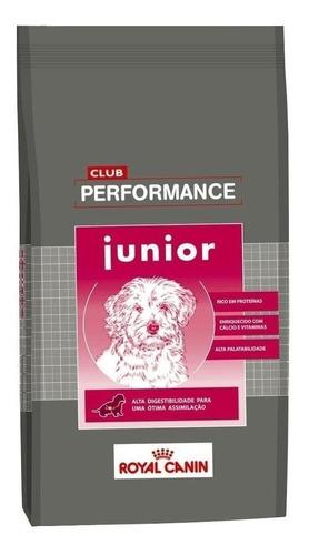 Ração Royal Canin Club Performance Junior para cachorro filhote todos os tamanhos em saco de 15kg