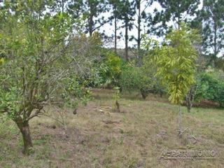Chacara - Jurupara - Ref: 28956 - V-28956