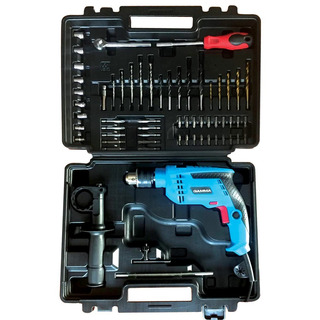 Taladro Percutor 13mm En Kit 710 W - G1903k Ar Gamma
