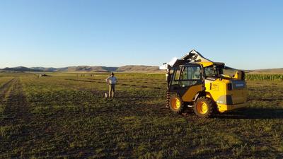 Alquiler Bobcat, Limpieza De Terrenos, Movimiento De Suelos