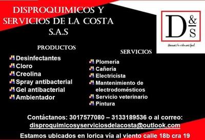 Disproquimicos Y Servicios De La Costa S.a