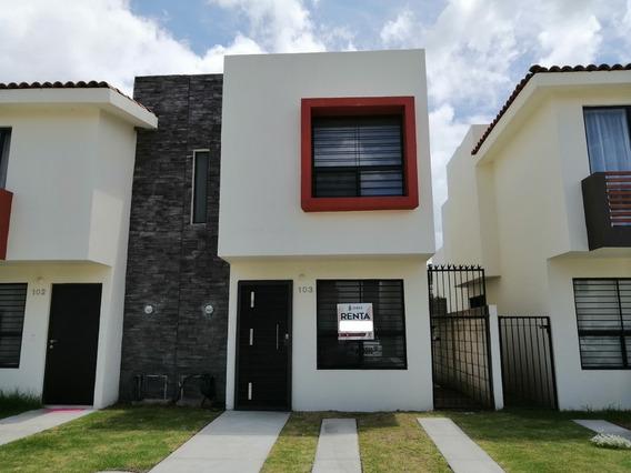 Casa En Renta Fraccionamiento El Campestre