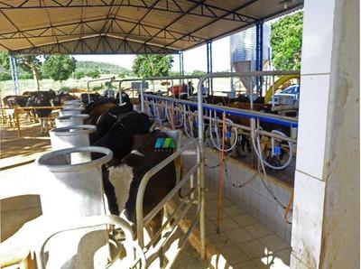 Fazenda Pecuária Leite 40 Ha Paracatu (mg) - Codigo: Fa0319 - Fa0319