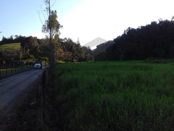Oportunidade Em Juquiá, Fazenda Á Venda Em Juquiá - 413 - 34787081