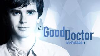 The Good Doctor Serie Temporada 1 Latino