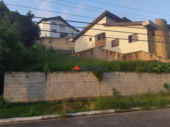 Terreno À Venda, 784 M² Por R$ 689.000,00 - Parque Dos Príncipes - São Paulo/sp - Te0266