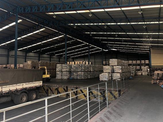 Galpao - Do Comercio - Ref: 13041 - L-bhb13041