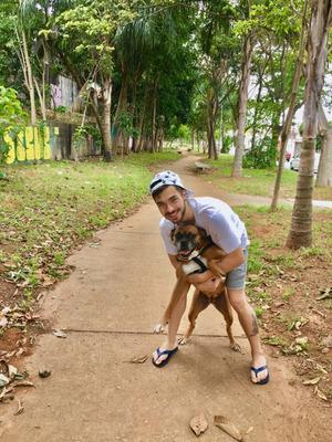 Dog Walker/passeador Em São Paulo - Sp