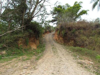 Sítio Rural À Venda, Cerro Azul, Cerro Azul. - Si0001