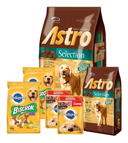 Imagen 1 de 5 de Comida Astro Adultos 17kg+ Promo -ver Foto- + Envío Gratis!