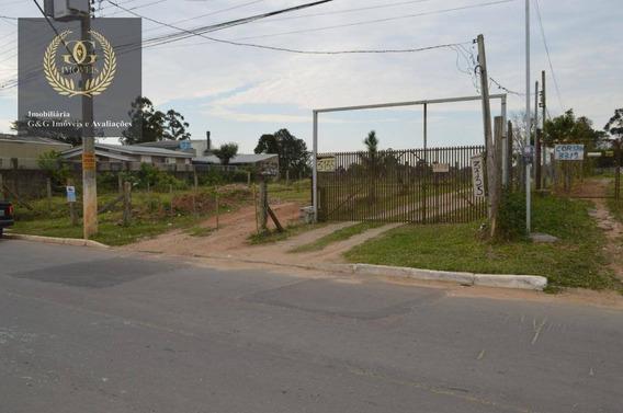 Terreno Residencial À Venda, São Lucas, Viamão. - Te0085