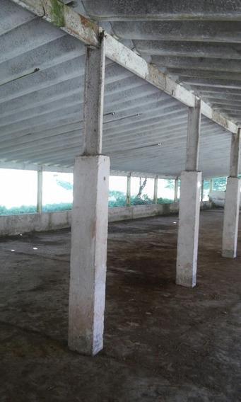 Vendo Lamina De Asbesto De 7.32 M De Largo X 1 M De Ancho