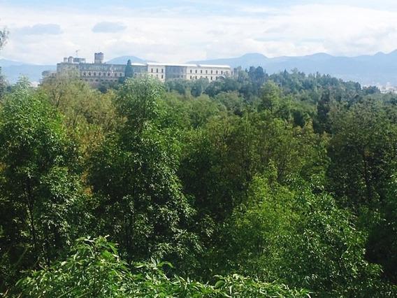Departamento Con Vista Espectacular Al Bosque De Chapultepec