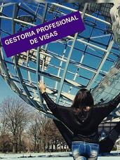 Gestión Profesional De Visas