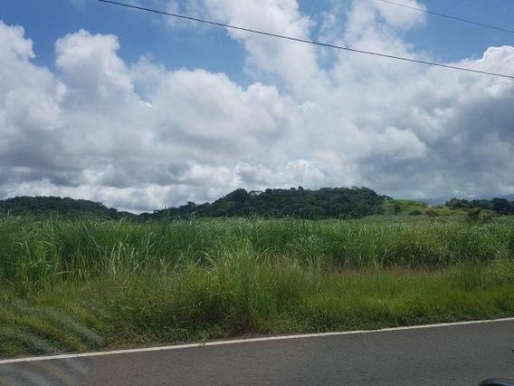 Vendo Terreno En La Carretera De Veracruz 17-4617**gg**