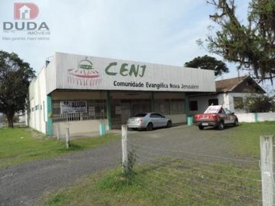 Galpao - Coloninha - Ref: 10976 - L-10976