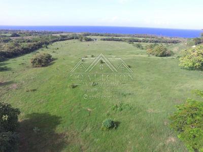 Coalición Vende 2,300 Tarea Con Playa $ 13 Usd X Mts2-