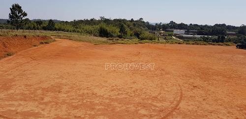 Imagem 1 de 15 de Terreno À Venda, 20000 M² Por R$ 1.600.000,00 - Água Espraiada (caucaia Do Alto) - Cotia/sp - Te9001
