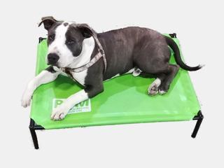 Catre Para Mascotas Perros Mediano Perro Cama Colchon