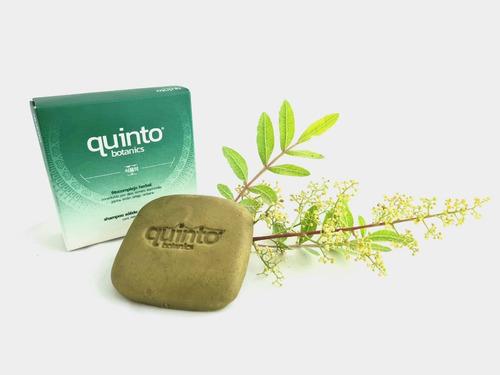 Imagen 1 de 3 de 1 Shampoo Sólido 100% Detox, Anticaida, Crecimiento