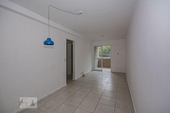 Apartamento Para Aluguel - Pechincha, 2 Quartos, 65 - 893035675