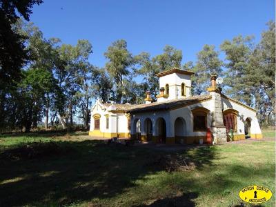 Cv-ca-ba-2053-h Excelente Campo Agricola 224has Navarro
