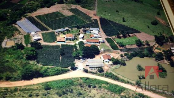 Sítio 2 Alqueires Com 7 Casas, 2 Lagos À Venda E Permuta - Estância Santa Maria Do Laranjal - Atibaia/sp - Si0046
