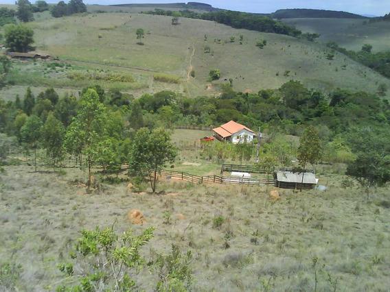 Sitio No Sul De Minas , Cidade De Andrelândia, Com 36 Ha , Todo Formado , Casa Sede E Casa De Caseiro. - 289