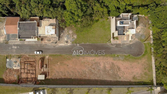 Terreno À Venda, 140 M² Por R$ 125.000 - Braga - São José Dos Pinhais/pr - Te0280