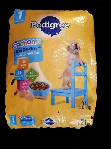 Imagen 1 de 2 de Pedigree Alimento Para Cachorro 21 Kg + Snack + Envío Gratis