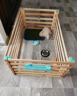 Corral De Madera Para Perros