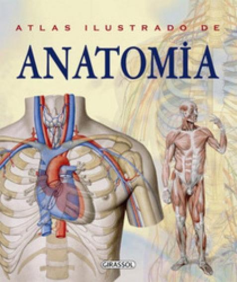 Atlas Ilustrado De Anatomia - Girassol