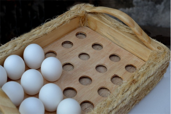 Bandeja Porta Ovos