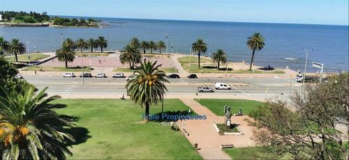 Parque Rodo Alquiler Oficinas Premium Frente Al Mar