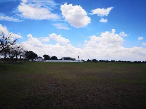 Rancho Agricultor En Venta. San Miguel De Allende. Rrv190708-tk