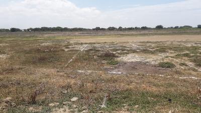 Vendo Lote De Terreno En Rodriguez De Mendoza, Amazonas.