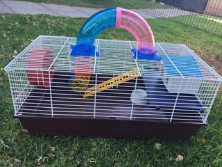 Hamsteras Grandes