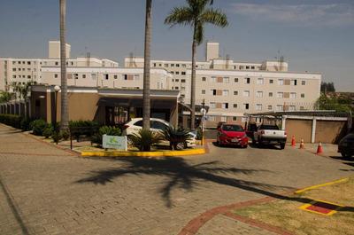 Apartamento Com 3 Dormitórios À Venda, 62 M² Por R$ 237.000 - Vila Bressani - Paulínia/sp - Ap7716