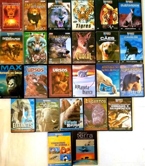 Dvd Colecao Filmes Animais Bichos