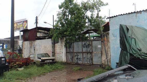 Terreno Em Cidade Naútica, São Vicente/sp De 0m² À Venda Por R$ 250.000,00 - Te312644