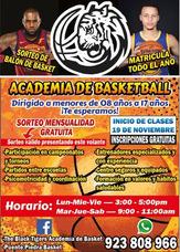 Academia De Baloncesto Basket En Zapallal, Puente Piedra