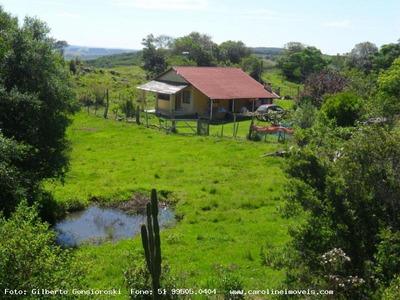 Sítio / Chácara Para Venda Em Mariana Pimentel, Passo Da Mônica, 2 Dormitórios, 1 Banheiro, 2 Vagas - 1170_1-1033507