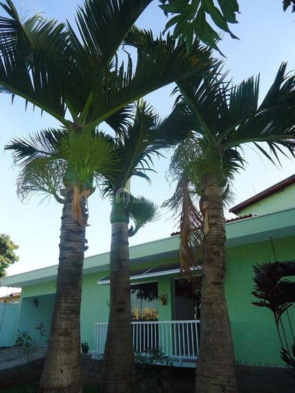 Casa À Venda Em Jardim Santa Genebra - Ca004027