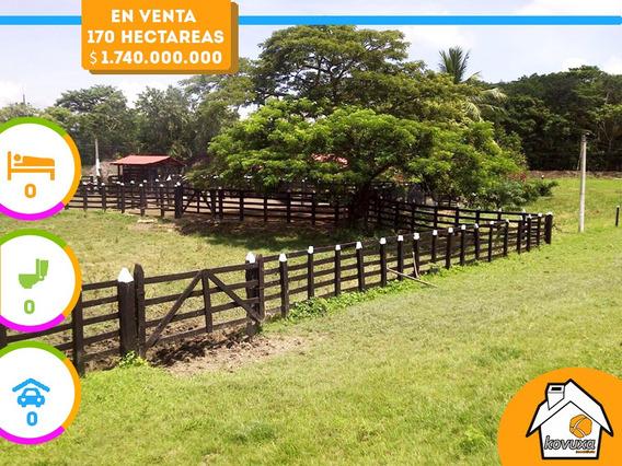 Finca En Venta En Rio Viejo, Bolívar