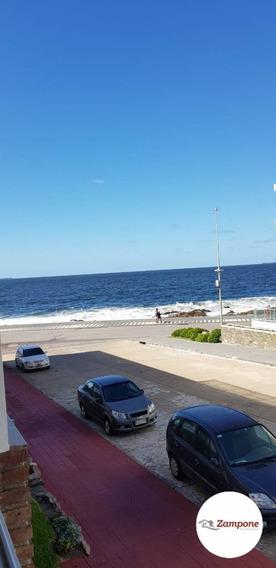 Departamentos Alquiler Punta Del Este