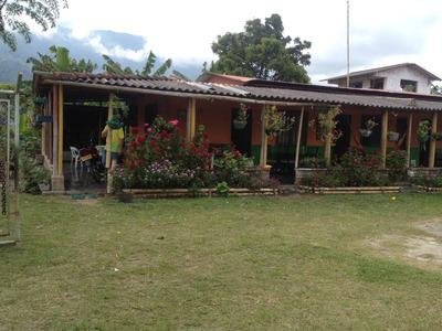 Venta Finca En El Municipio De Calarcá