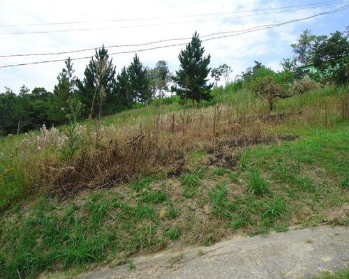 Imagem 1 de 5 de Terreno À Venda Em Juquitiba - 318 - 32982572
